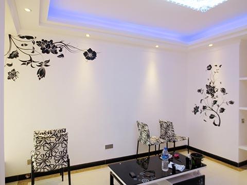 [客厅背景墙绘作品]----长沙鑫科明珠–黑色藤蔓