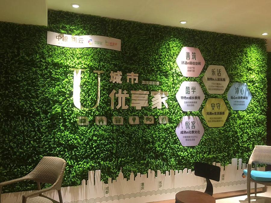 室内绿色植物墙----绿植装饰